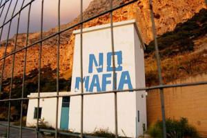 nomafia_N1